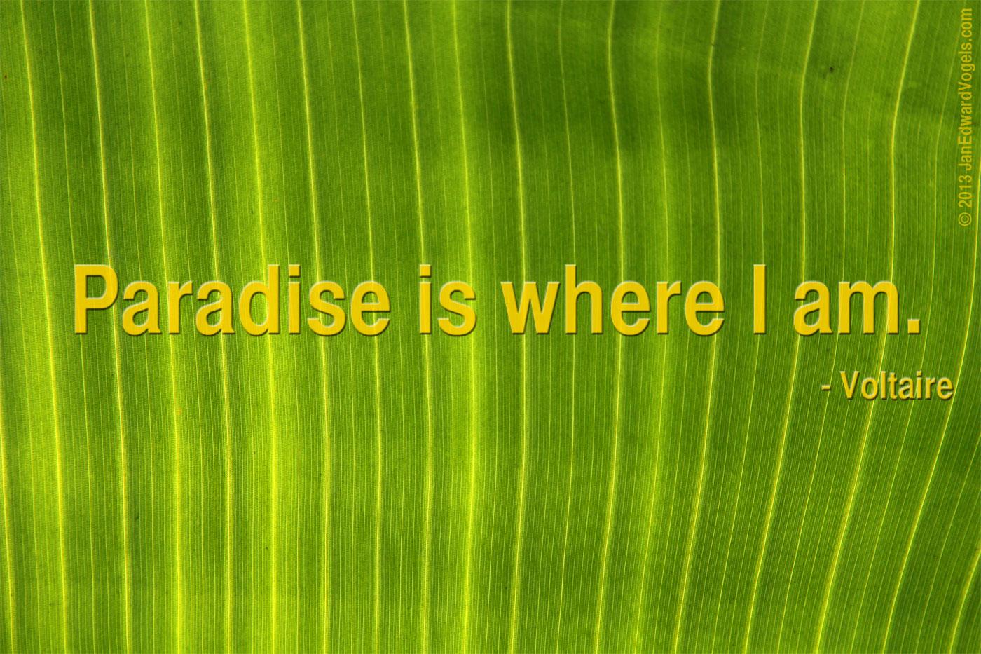 Voltaire, quote, paradise quote