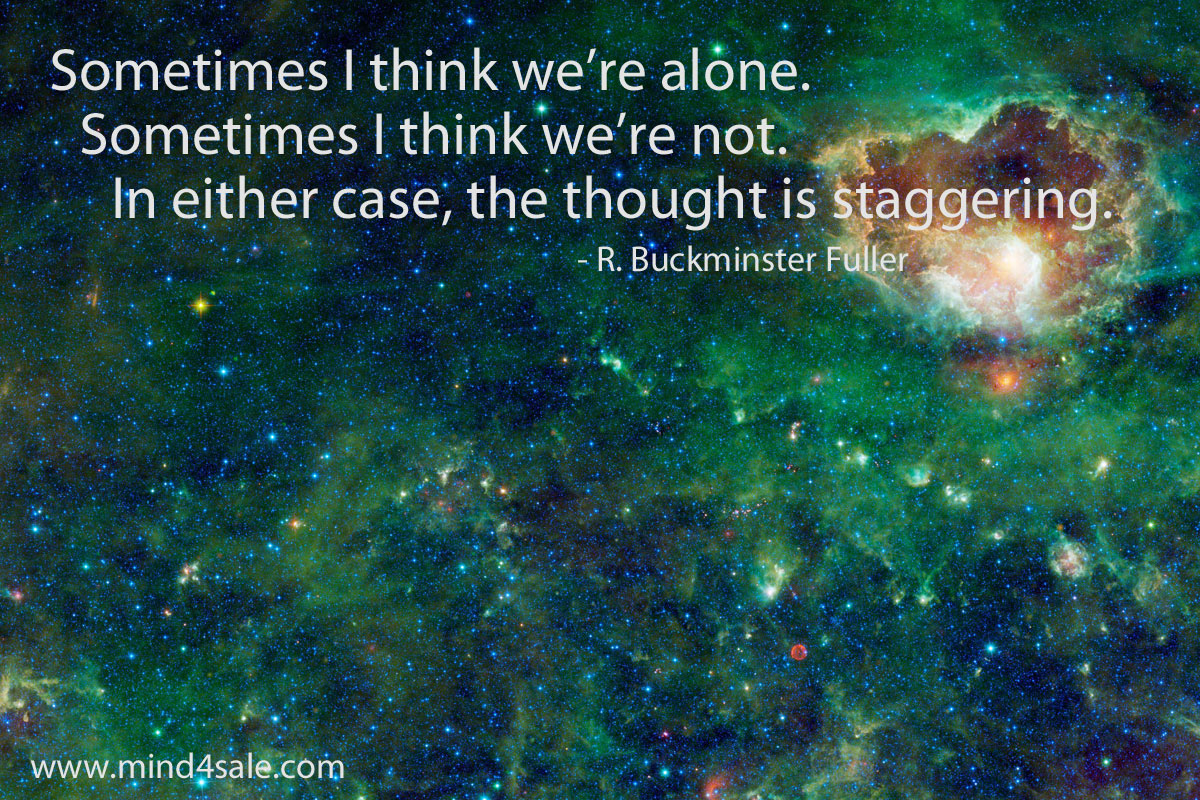 R. Buckminster Fuller, quote, Jan Edward Vogels